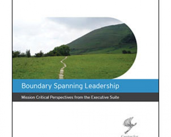 Boundary Spanning Leadership